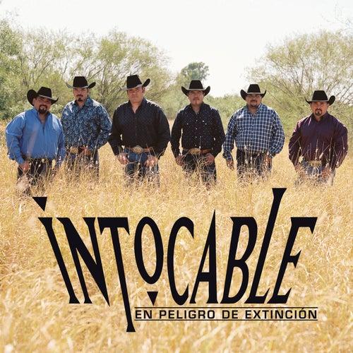 En Peligro De Extinción by Intocable
