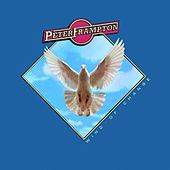 Wind Of Change by Peter Frampton