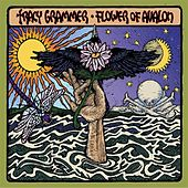 Play & Download Flower of Avalon by Tracy Grammer | Napster