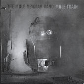 Mule Train by The Mule Newman Band