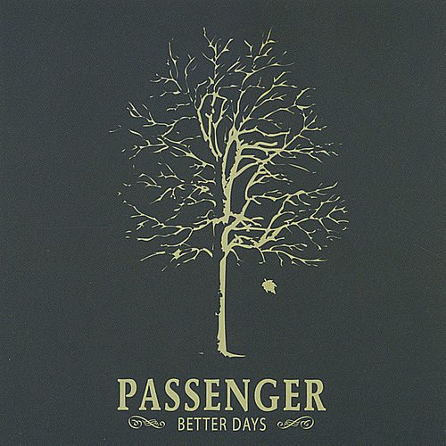 Better Days by Passenger (Pop)