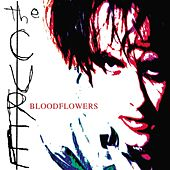 Play & Download Bloodflowers by The Cure | Napster