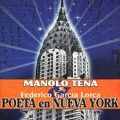 Manolo Tena Y Federico García Lorca. Poeta En Nueva York by Manolo Tena