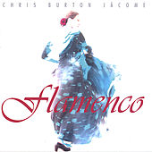 Play & Download Flamenco by Chris Burton Jácome | Napster