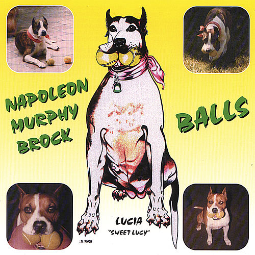 Play & Download Balls by Napoleon Murphy Brock | Napster