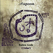 Play & Download Cidar by Rapoon | Napster