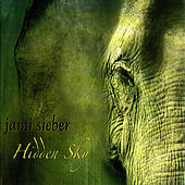 Hidden Sky by Jami Sieber