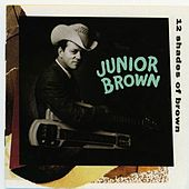 12 Shades Of Brown by Junior Brown