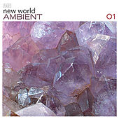 Play & Download New World Ambient 01 by Various Artists | Napster