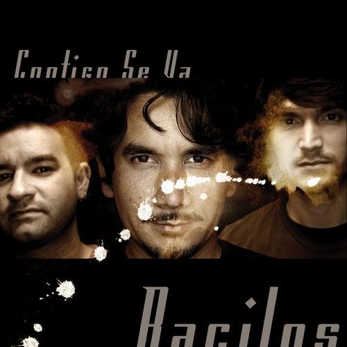 Play & Download Contigo by Bacilos | Napster