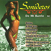 Sonideros de Mi Barrio, Vol. 1 by Various Artists