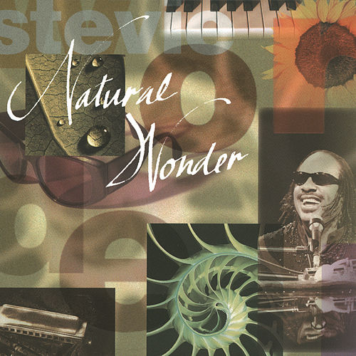 Play & Download Natural Wonder by Stevie Wonder | Napster