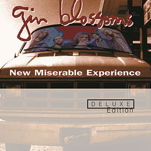 New Miserable Experience by Gin Blossoms