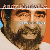 Grandes Exitos by Andy Montanez
