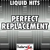 Perfect Replacement - A Tribute to Example by Liquid Hits