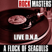 Play & Download Rock Masters: Live D.N.A. by A Flock of Seagulls | Napster