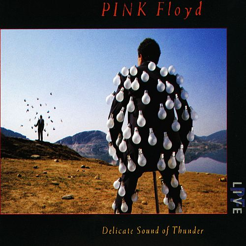 Delicate Sound Of Thunder by Pink Floyd