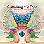 Play & Download Gathering The Tribe by Various Artists | Napster