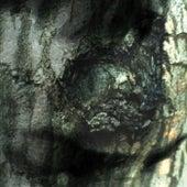 The Waltz of the Monsters by Yann Tiersen
