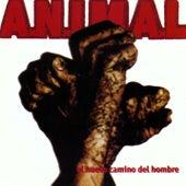 Nuevo Camino del Hombre by A.N.I.M.A.L.