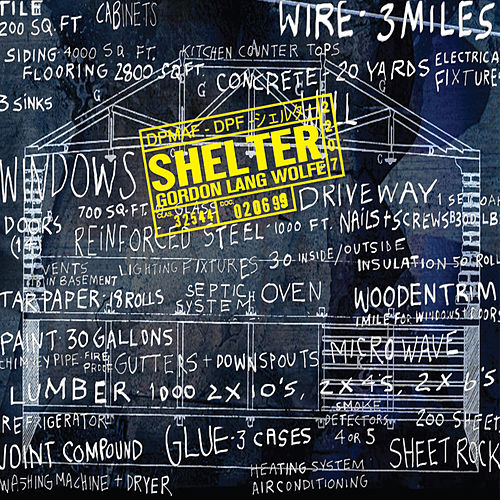 Play & Download Shelter by Ensemble Signal | Napster