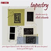 Play & Download Schwartz: Tapestry by Various Artists | Napster