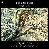 Play & Download Schubert: Winterreise by Hans Jorg Mammel | Napster