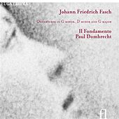 Play & Download Fasch: Ouvertures in G minor, D minor & G major by Il Fondamento | Napster