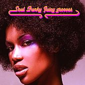 Soul Funky Juicy Grooves by Various Artists