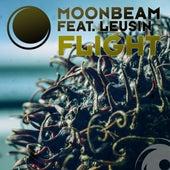 Flight by Moonbeam
