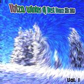 Play & Download Ibiza Winter DJ Best Dance Hits 2013, Vol. 1 by Various Artists | Napster