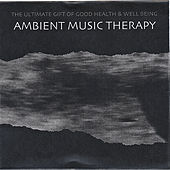 Play & Download Ambient Deep Sleep: Deep Sleep Experience 2 by Ambient Music Therapy | Napster