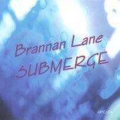 SUBMERGE by Brannan Lane