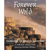 Forever Wild by Michael Whalen