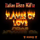Flames of Love by Italian Disco Mafia