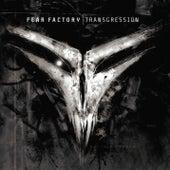 Transgression von Fear Factory