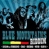 Play & Download Blue Mountains Riddim by Various Artists | Napster