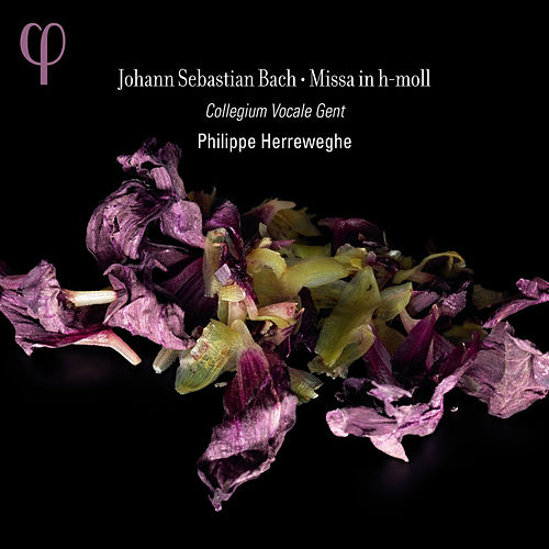 Bach: Missa in h-moll by Dorothee Mields