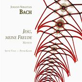 Play & Download Jesu, Meine Freude by Setti Voci | Napster