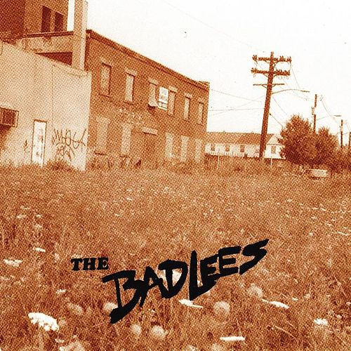 Play & Download Ain't for You by The Badlees | Napster