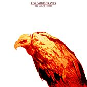 Play & Download My Son's Home by The Roadside Graves | Napster