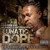 Play & Download D.O.P.E. by Lunatic | Napster