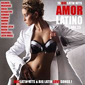 Amor Latino, Vol. 23 - 15 Big Latin Hits & Latin Love Songs (Bachata, Merengue, Salsa, Reggaeton, Kuduro, Mambo, Cumbia, Urbano, Ragga) by Various Artists