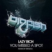 You Missed A Spot by Lazy Rich