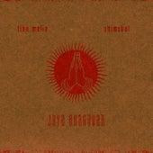Jaya Bhagavan by Tina Malia