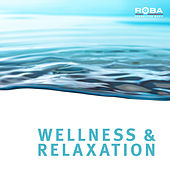 Play & Download Wellness & Relaxiation by Richard Rossbach | Napster