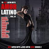Amor Latino, Vol. 14 - 15 Big Latin Hits & Latin Love Songs (Bachata, Merengue, Salsa, Reggaeton, Kuduro, Mambo, Cumbia, Urbano, Ragga) by Various Artists