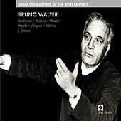 Play & Download Great Conductors of the 20th Century - Bruno Walter by Various Artists | Napster