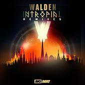 Play & Download Intropial Remixes by Walden | Napster