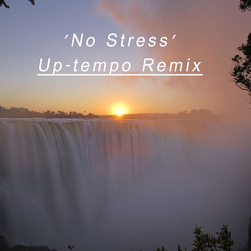 Play & Download No Stress 'Up-Tempo Remix' by Paul Hardcastle | Napster
